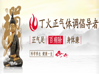 深圳市丁火科技有限公司